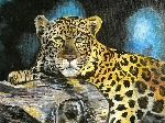 'leopard ' by 'rosi tretter'